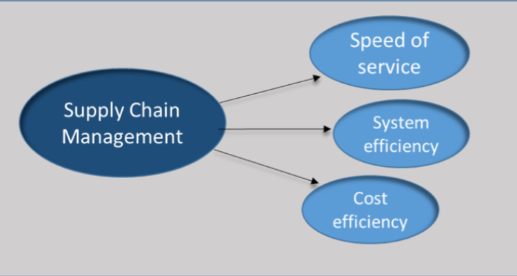 The Efficiency of the Supply Chain Management